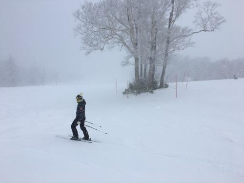札幌国際スキー場!_c0151965_17413001.jpg
