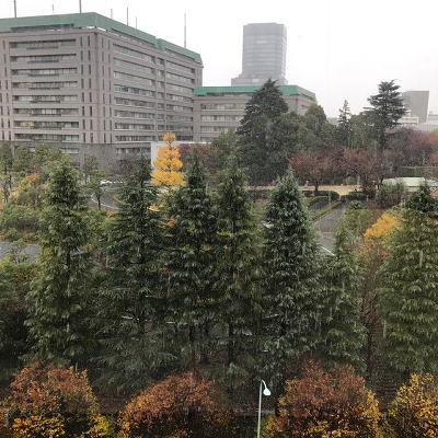東京校 11月のソーイング講座_d0091671_11160258.jpg