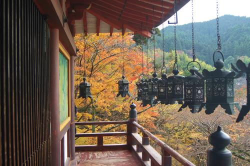 名残の紅葉 2 ~ 談山神社&岡寺_e0181373_21491287.jpg
