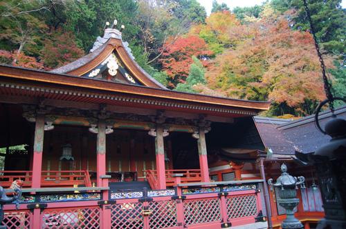名残の紅葉 2 ~ 談山神社&岡寺_e0181373_21493847.jpg