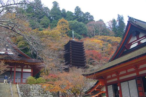 名残の紅葉 2 ~ 談山神社&岡寺_e0181373_21502732.jpg