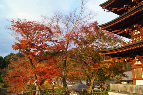 名残の紅葉 2 ~ 談山神社&岡寺_e0181373_2158435.jpg