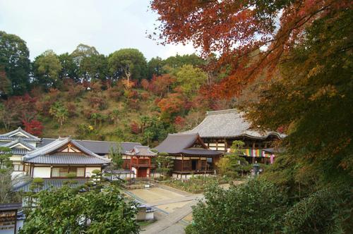 名残の紅葉 2 ~ 談山神社&岡寺_e0181373_2159027.jpg
