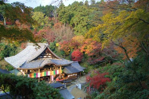 名残の紅葉 2 ~ 談山神社&岡寺_e0181373_2263821.jpg