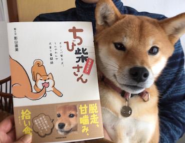 アトリエkotori広報部からのお知らせ_b0011075_1856340.jpg
