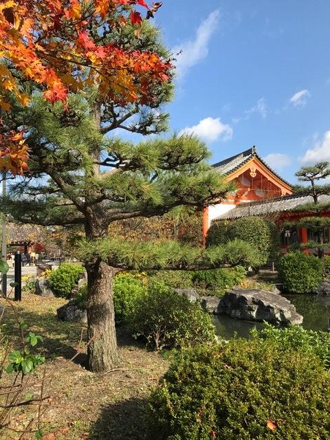 京都_f0204295_11260336.jpg