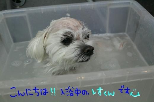 有難う!!_b0130018_01040165.jpg