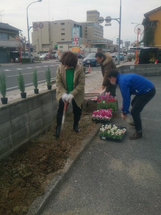 花を植えました♪_b0216924_1458276.jpg