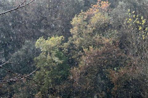 ペルージャ初雪・極寒と大当たり占い修道士予報_f0234936_6575818.jpg