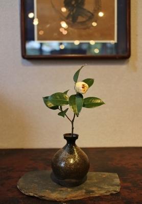 花だより 椿_a0279848_14485857.jpg