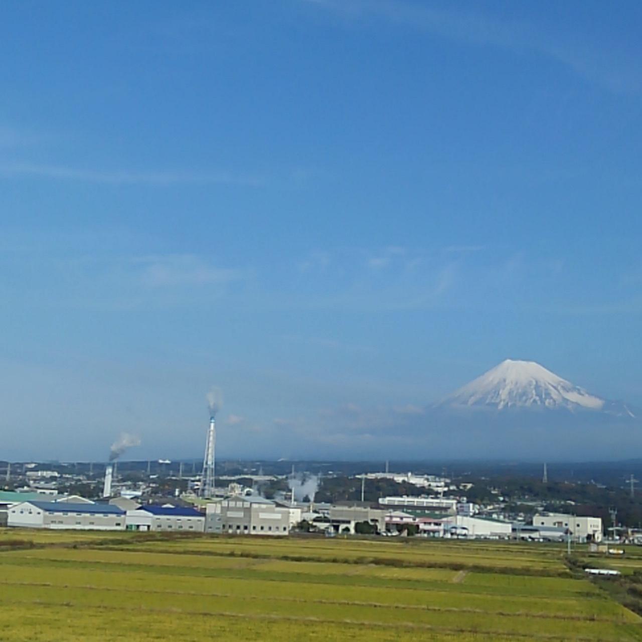 パンダの大好きな雪を頂いた富士山_b0096957_09104747.jpg