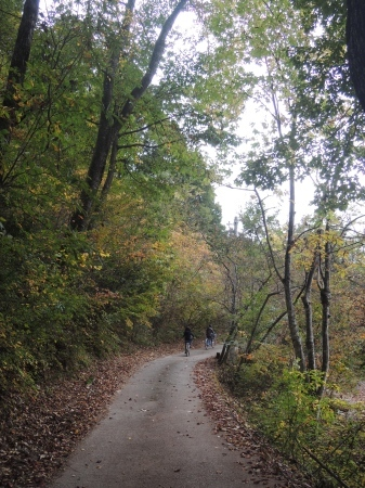 森のクッキングホリデーWS ご報告_b0218062_13191868.jpg