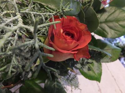オークリーフ花の教室(甘艸さんと大草さんの作品)_f0049672_18402284.jpg