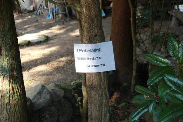 鈍川渓谷の釣り堀  門岡養魚場_f0098083_23225884.jpg