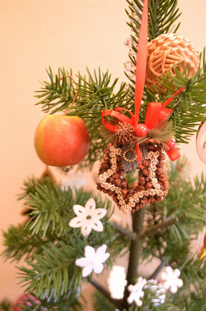 クリスマスの準備_a0233896_1612619.jpg