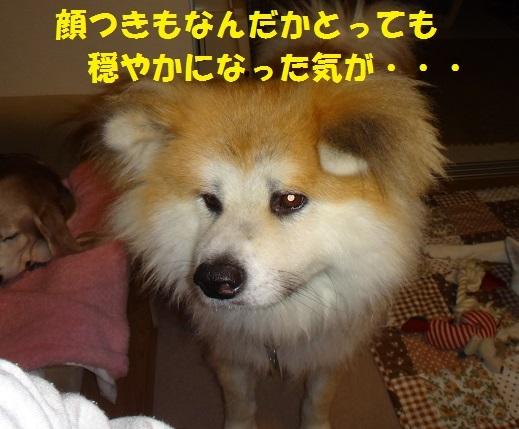 f0121712_14200997.jpg