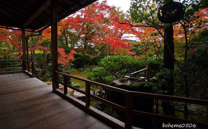 2016京都紅葉~妙心寺大法院_e0363038_1942468.jpg