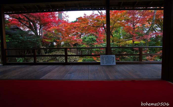 2016京都紅葉~妙心寺大法院_e0363038_1942922.jpg