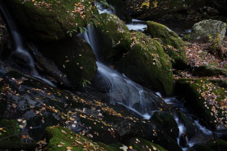 矢祭町 滝川渓谷の紅葉 その1_e0165983_1794995.jpg
