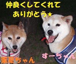 f0121712_08401316.jpg