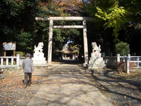 平安時代、鮎河(相模川)、平塚・寒川間に浮橋があったかもしれません_d0240916_17204389.jpg