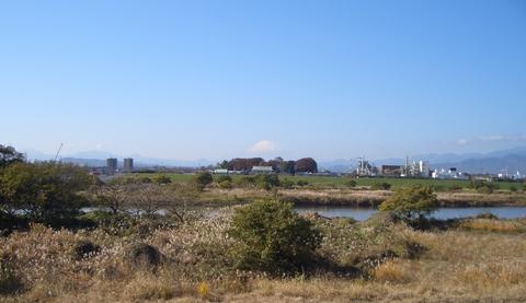 平安時代、鮎河(相模川)、平塚・寒川間に浮橋があったかもしれません_d0240916_1724898.jpg