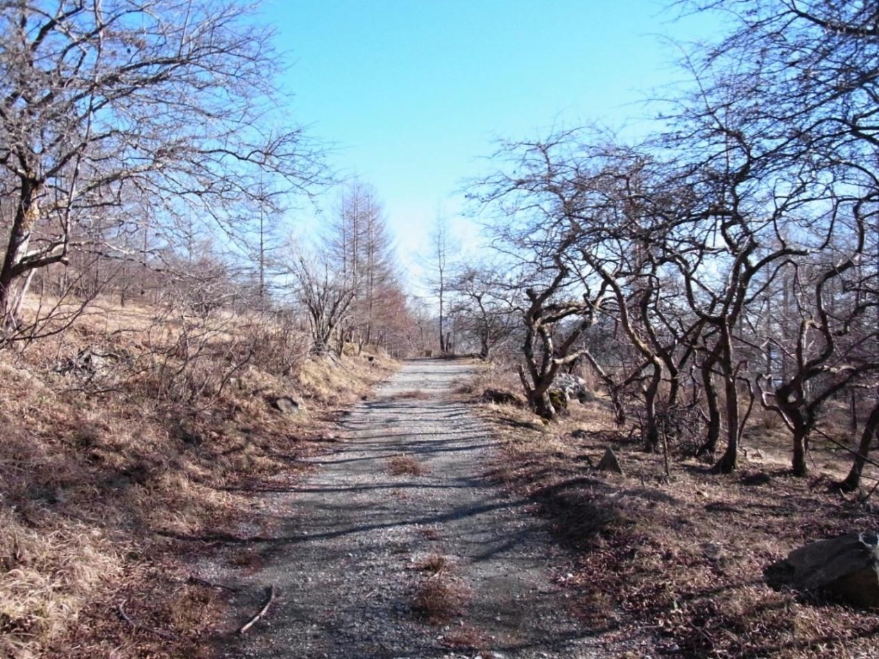 2015/12/18 乾徳山 道満山 04_d0233770_2324854.jpg