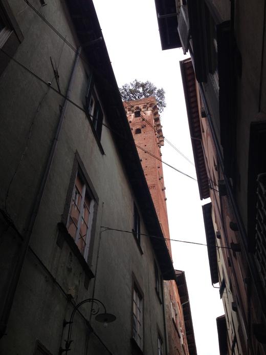 ルッカ:グイニージの塔に上る_a0136671_2131594.jpg
