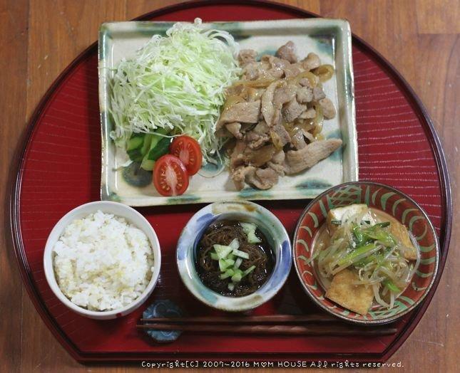 ソースケチャップハンバーグ ✿ 豚の生姜焼き♪_c0139375_11265965.jpg