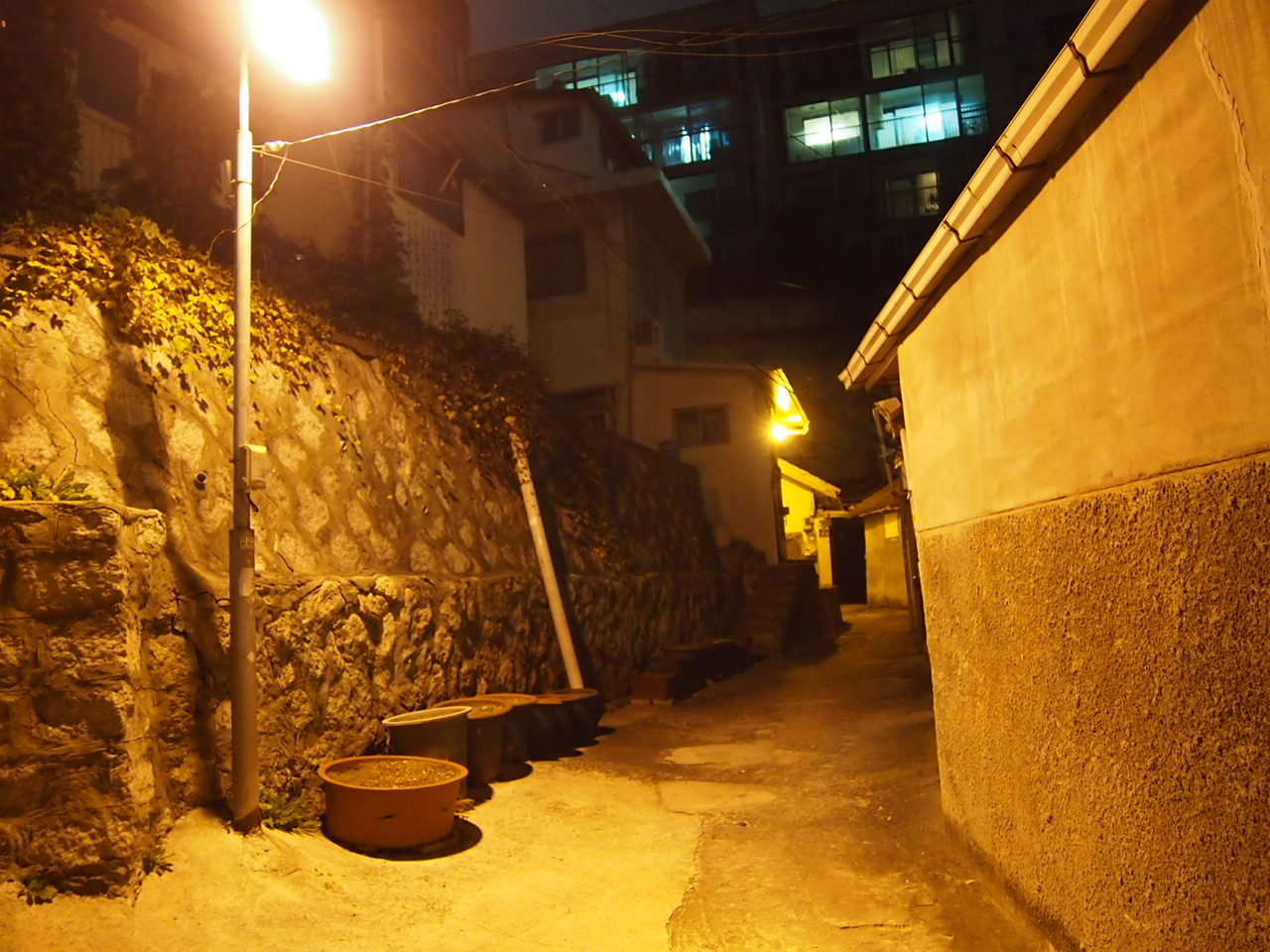 f0152079_20120239.jpg
