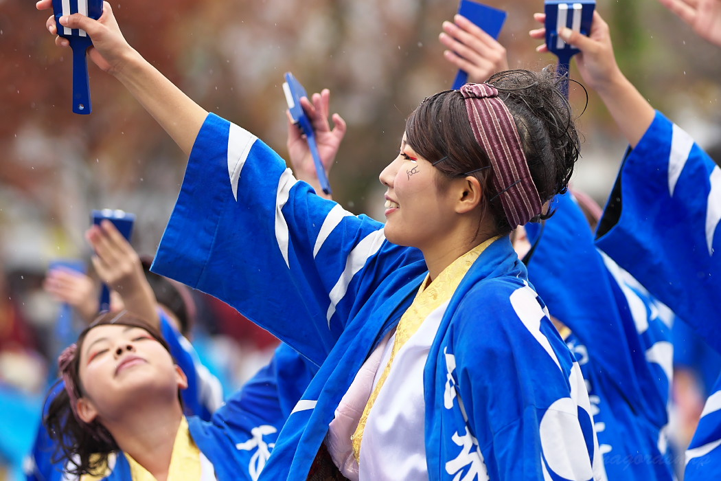 名古屋大学 快踊乱舞 @ 第12回四日市よさこい祭り~やったろ舞~_c0187584_11104134.jpg