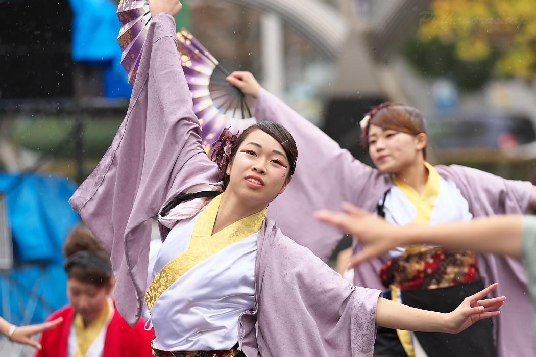 名古屋大学 快踊乱舞 @ 第12回四日市よさこい祭り~やったろ舞~_c0187584_11115045.jpg