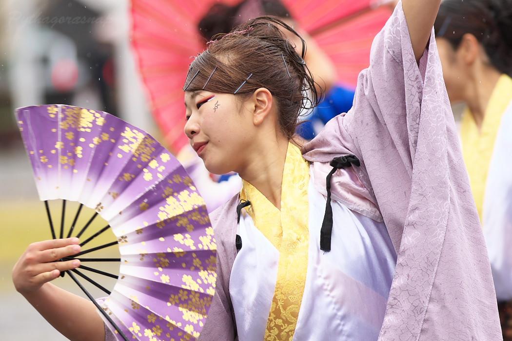 名古屋大学 快踊乱舞 @ 第12回四日市よさこい祭り~やったろ舞~_c0187584_11115697.jpg