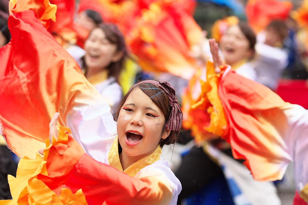 名古屋大学 快踊乱舞 @ 第12回四日市よさこい祭り~やったろ舞~_c0187584_11173827.jpg