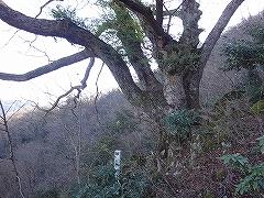 登山教室_e0064783_17085612.jpg