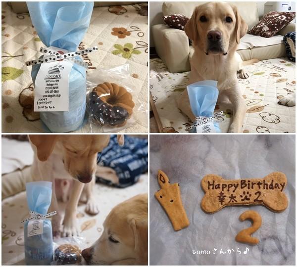 幸たん、2歳のお誕生日♪_c0028792_23431147.jpg