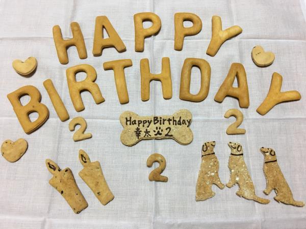 幸たん、2歳のお誕生日♪_c0028792_23432359.jpg