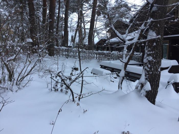 あなぐま荘の初雪2016_c0301809_23562313.jpg