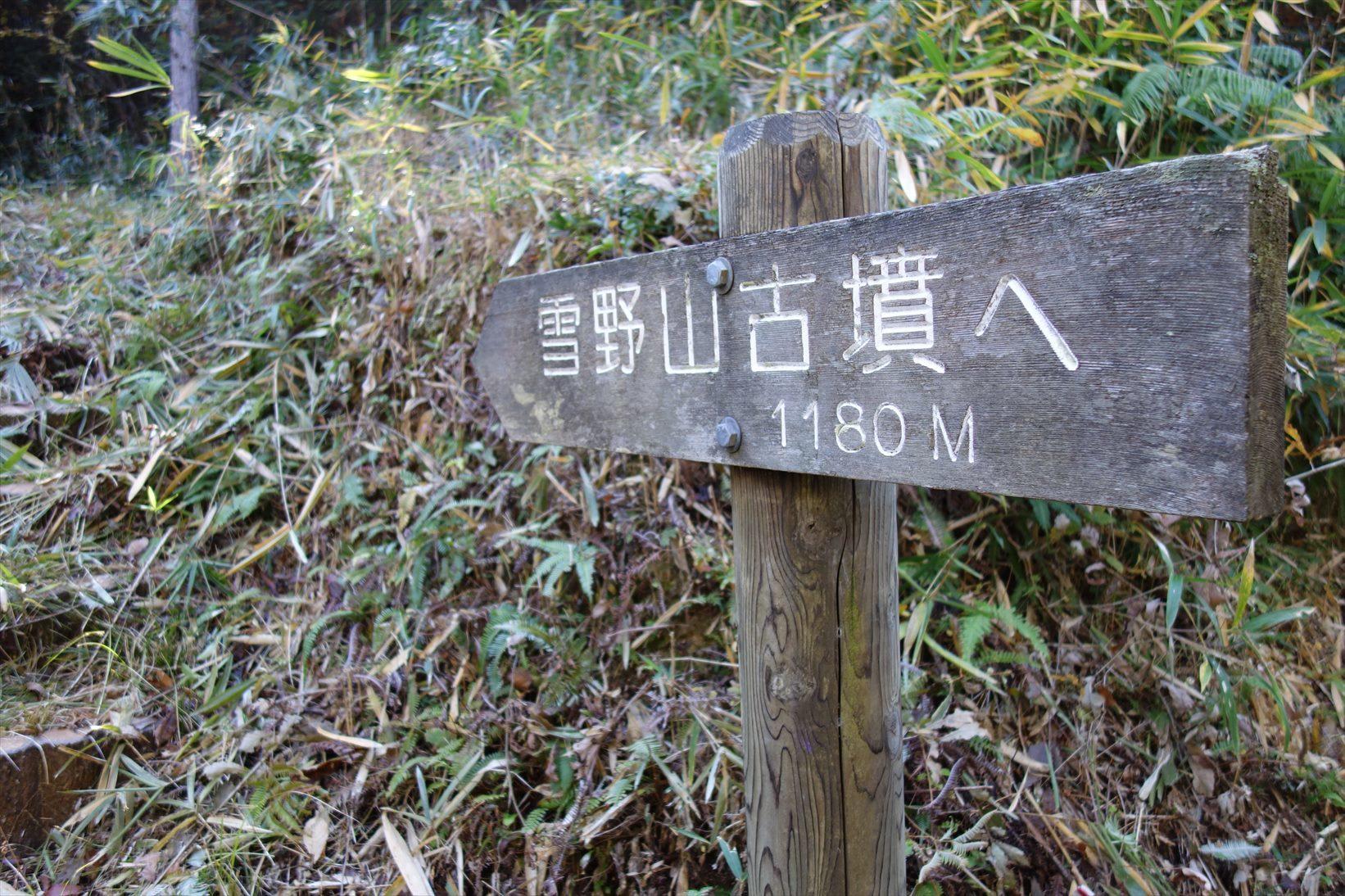 △ 蒲生野に浮かぶ雪野山 お気軽展望ハイキング △_f0348933_09553953.jpg
