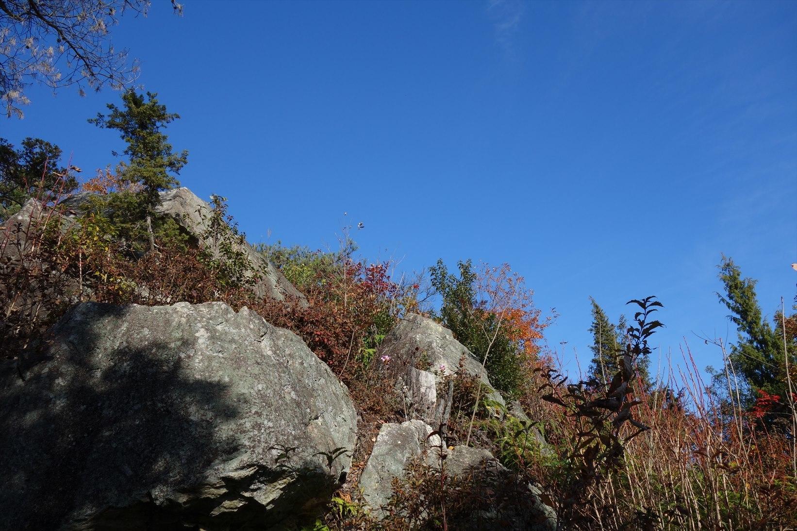 △ 蒲生野に浮かぶ雪野山 お気軽展望ハイキング △_f0348933_10134611.jpg