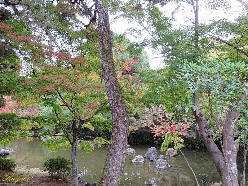 京都_a0353839_02183051.jpg