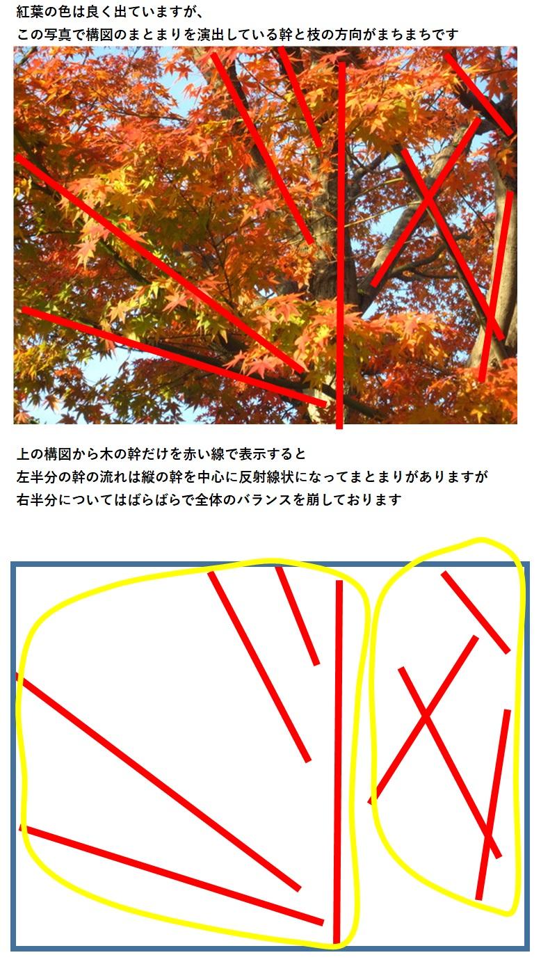 b0243152_20355615.jpg