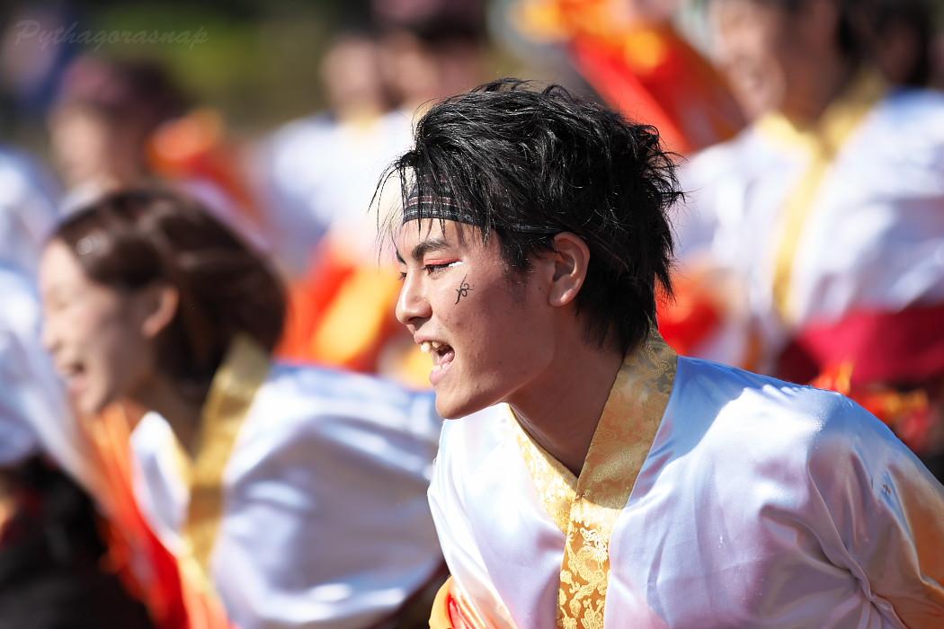 名古屋大学 快踊乱舞 @  第10回碧南よさこいやってみりん祭_c0187584_17511740.jpg