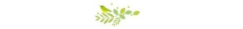 ワッタガッタ大邱 ⑯大邱カトリック大学校ユスティノキャンパス_a0140305_02284529.jpg