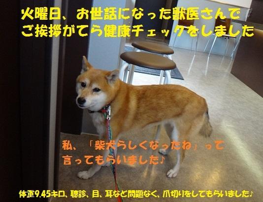 f0121712_14562408.jpg
