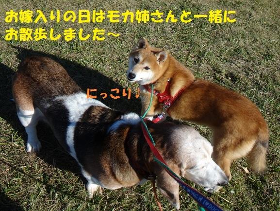 f0121712_15035252.jpg