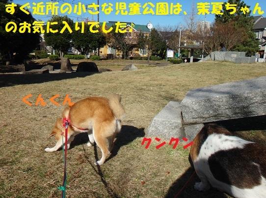 f0121712_15040232.jpg