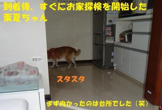 f0121712_15101361.jpg