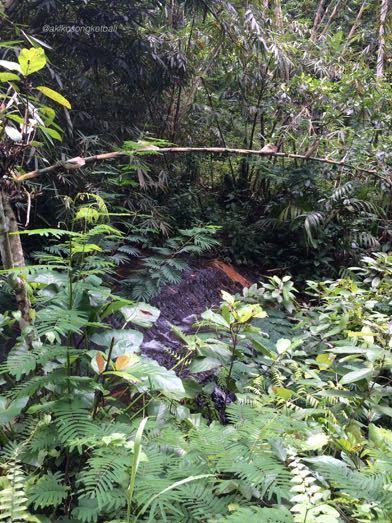 """トゥカッ・チュプンの滝へ行ってみました。その1 \""""Jalan2 ke Air Terjun Tukad Cepung I\""""_a0120328_17330011.jpg"""
