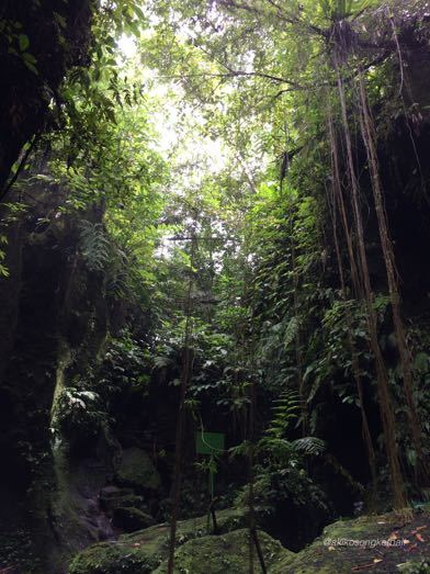"""トゥカッ・チュプンの滝へ行ってみました。その2 \""""Jalan2 ke Air Terjun Tukad Cepung II""""_a0120328_18560362.jpg"""